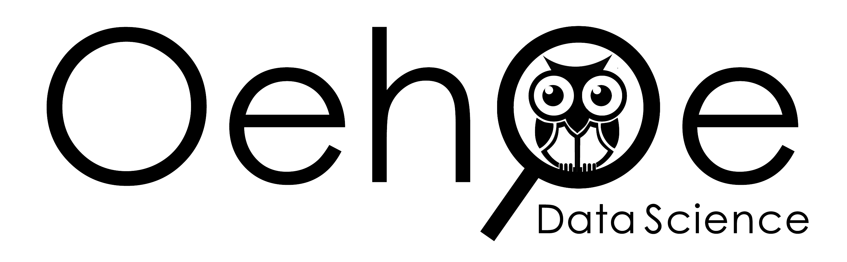 Oehoe Data Science BV